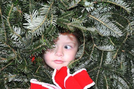 child in Christmas tree