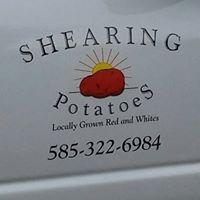 Shearing Potatoes